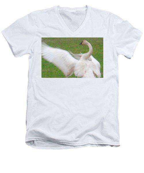 Swan Posing Men's V-Neck T-Shirt
