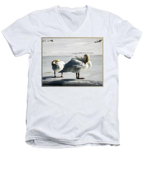 Swans On Ice Men's V-Neck T-Shirt
