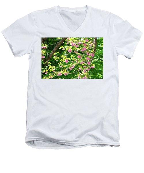 Sweeping Cherry Blossom Branches Men's V-Neck T-Shirt