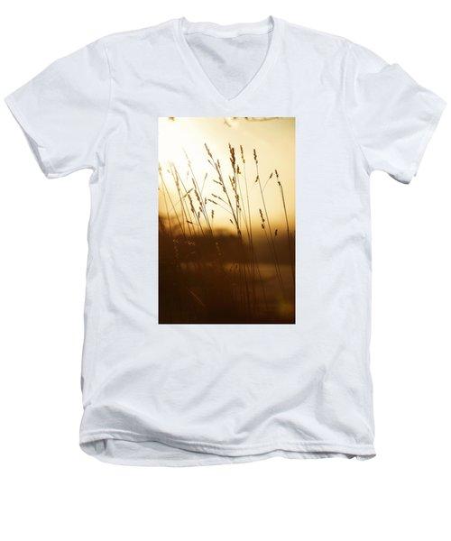 Tall Grass In The Morning Men's V-Neck T-Shirt