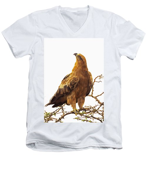 Tawny Eagle Men's V-Neck T-Shirt by Patrick Kain