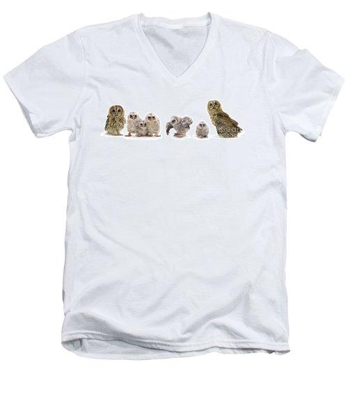 Tawny Owl Family Men's V-Neck T-Shirt