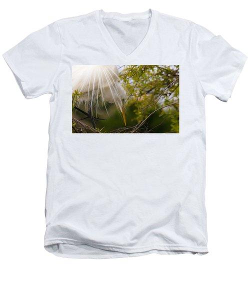 Tending To The Nest Men's V-Neck T-Shirt