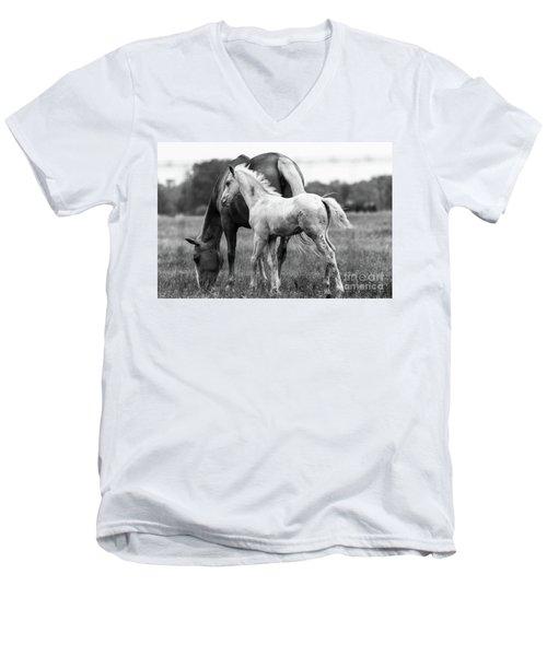 Texas Ranch  Men's V-Neck T-Shirt