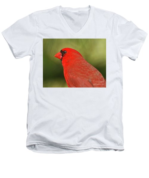 Men's V-Neck T-Shirt featuring the photograph That Smiling Face by Kerri Farley