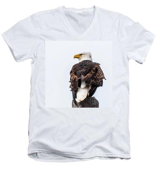 The Alert Men's V-Neck T-Shirt