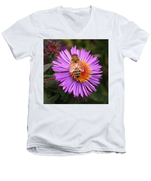 Men's V-Neck T-Shirt featuring the photograph The Aster And The Bee by Laurel Talabere