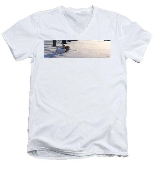 The Bird House Bench Men's V-Neck T-Shirt