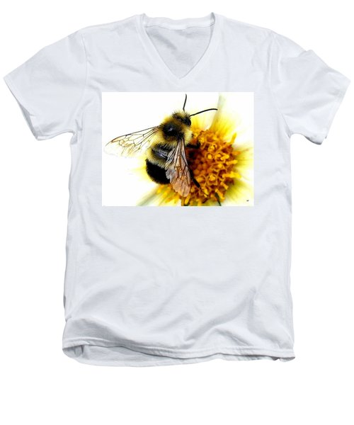 The Buzz Men's V-Neck T-Shirt