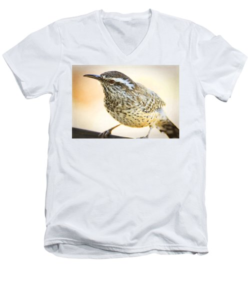 The Cactus Wren  Men's V-Neck T-Shirt