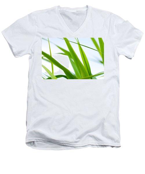 The Cane Men's V-Neck T-Shirt