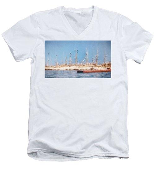 The Cormorants At Deaths Door Men's V-Neck T-Shirt