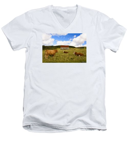 The Cows Of Mabou Men's V-Neck T-Shirt by Ken Morris