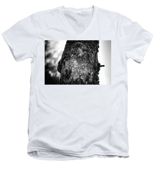 The Eagle In The Tree Men's V-Neck T-Shirt
