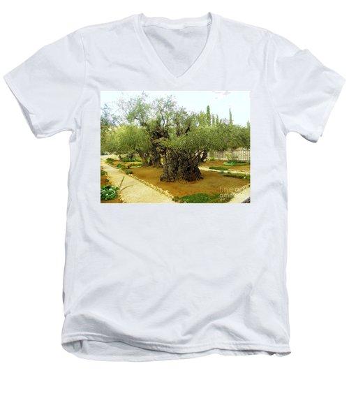 The Garden Of Gethsemane Men's V-Neck T-Shirt