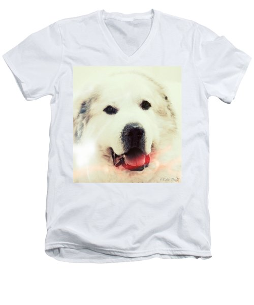 The Great Pyrenean Men's V-Neck T-Shirt