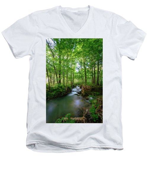 The Green Forest Men's V-Neck T-Shirt