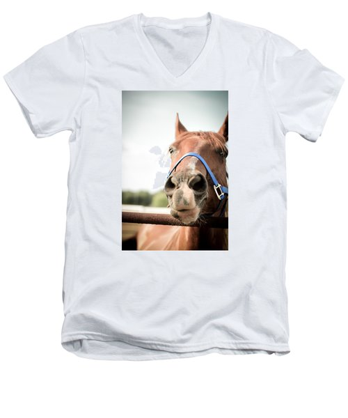 The Horse's Mouth Men's V-Neck T-Shirt