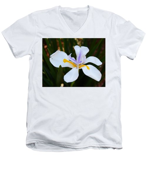 The Legacy African Iris Men's V-Neck T-Shirt