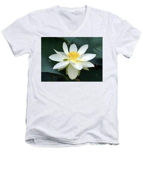 Men's V-Neck T-Shirt featuring the photograph The Lotus Flower The Frog And The Bee by Gary Crockett