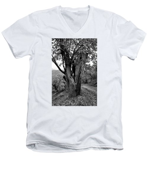 The Maltreated One Men's V-Neck T-Shirt by Goyo Ambrosio
