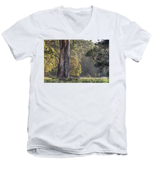 The Meadow Men's V-Neck T-Shirt