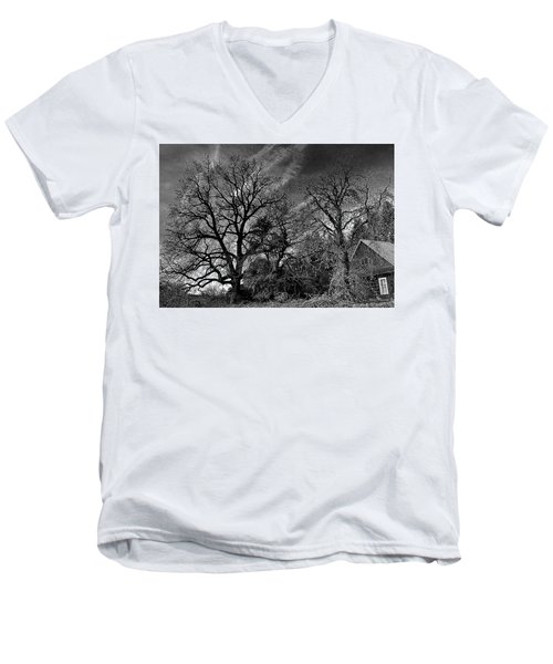 The Old Oak Tree Men's V-Neck T-Shirt by Steve Warnstaff