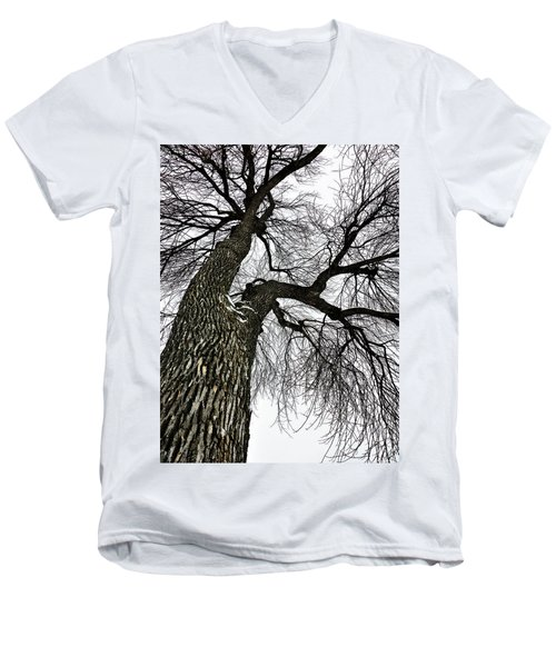 The Old Tree Men's V-Neck T-Shirt
