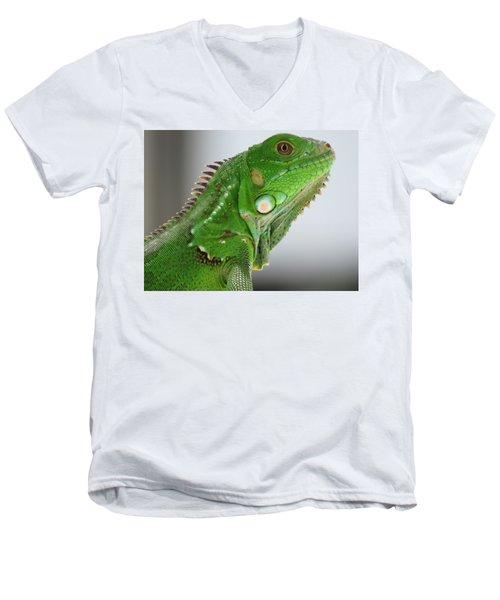 The Omnivorous Lizard Men's V-Neck T-Shirt