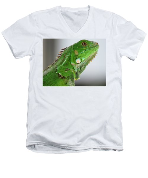 The Omnivorous Lizard Men's V-Neck T-Shirt