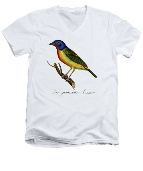 The Painted Bunting Men's V-Neck T-Shirt