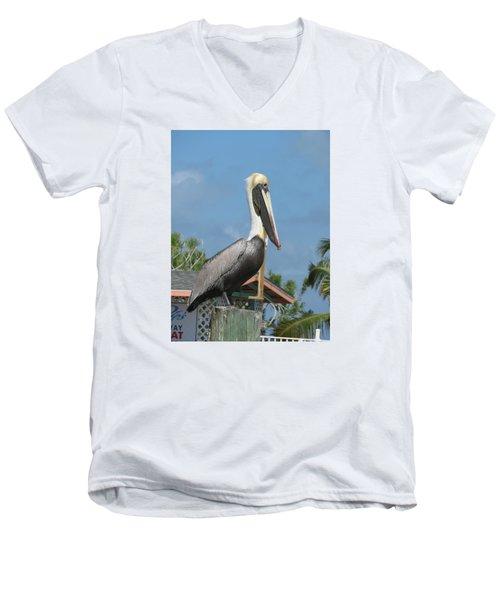 The Pelican Men's V-Neck T-Shirt by Robin Regan