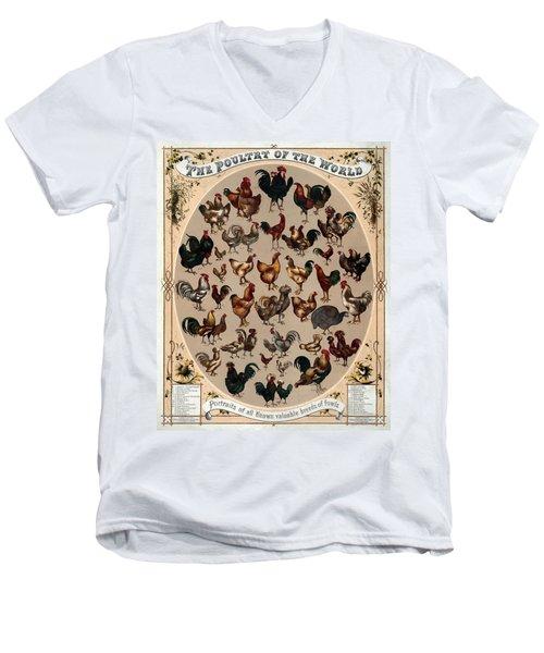 The Poultry Of The World 1868 Men's V-Neck T-Shirt