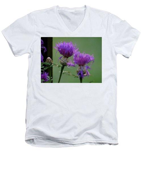 The Purple Bloom Men's V-Neck T-Shirt