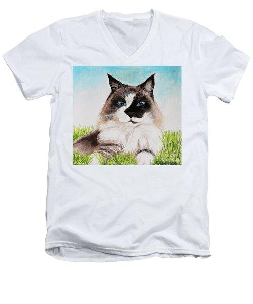The Ragdoll Men's V-Neck T-Shirt