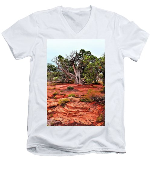 The Tree That Knows All Men's V-Neck T-Shirt