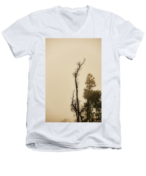 The Trees Against The Mist Men's V-Neck T-Shirt by Rajiv Chopra