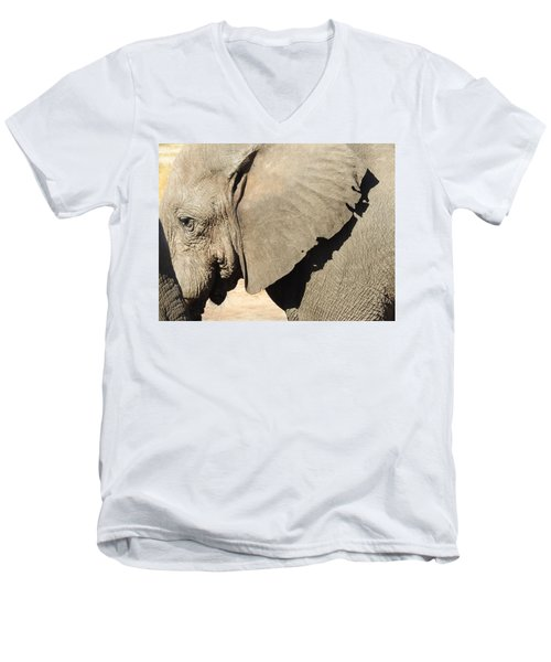 Men's V-Neck T-Shirt featuring the photograph The Weathered Look by Betty-Anne McDonald