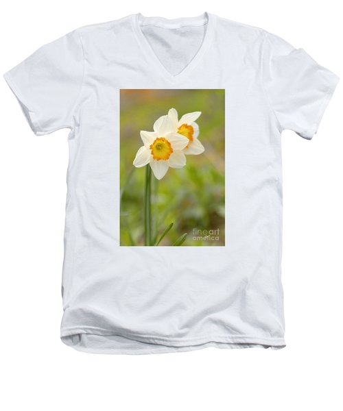 Thinking About Spring Men's V-Neck T-Shirt by Alana Ranney