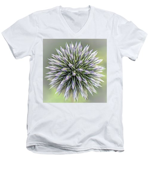 Thistle II Men's V-Neck T-Shirt