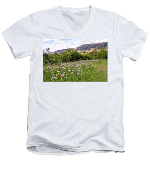 Thistles In The Canyon Men's V-Neck T-Shirt