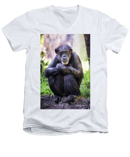 Thoughtful Chimpanzee  Men's V-Neck T-Shirt