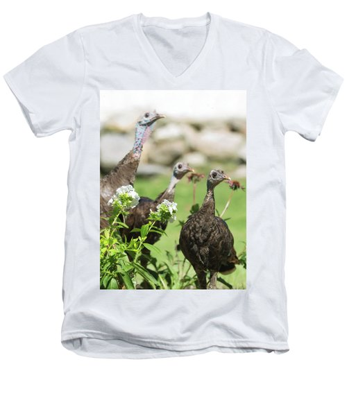 Threes A Crowd Men's V-Neck T-Shirt