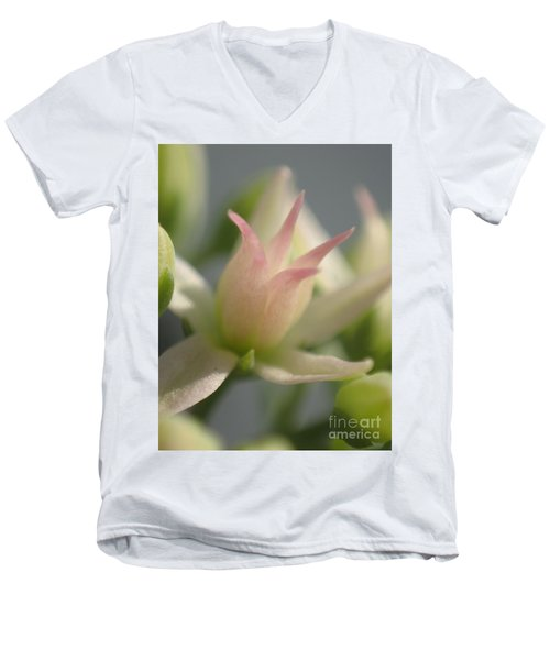 Men's V-Neck T-Shirt featuring the photograph Tiny Crown by Christina Verdgeline