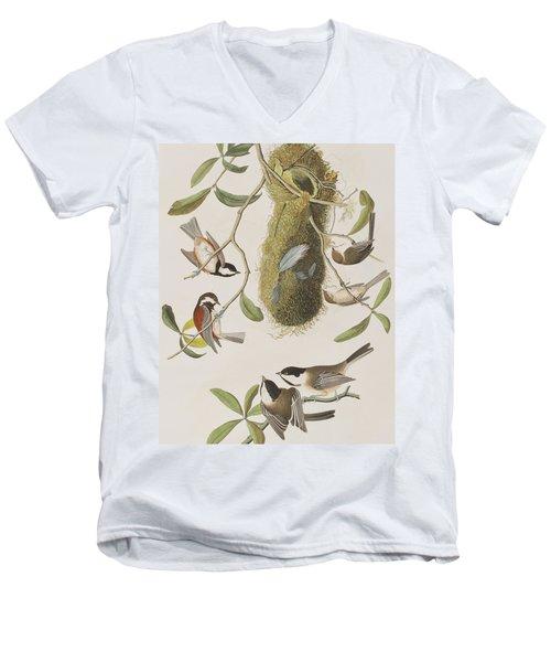 Titmouses Men's V-Neck T-Shirt