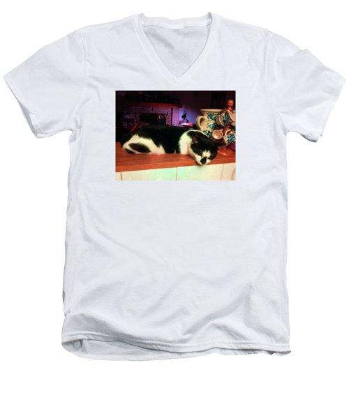Toulouse Men's V-Neck T-Shirt by Vicky Tarcau