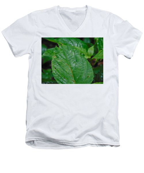Trail Vibes Men's V-Neck T-Shirt