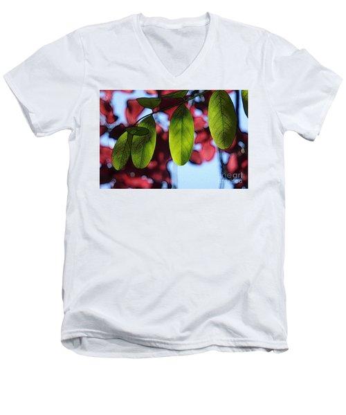 Transparence 21 Men's V-Neck T-Shirt