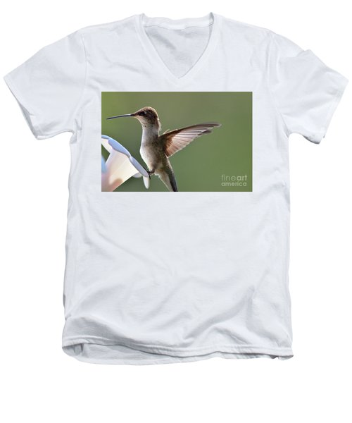 Transparent Winged Hummingbird Men's V-Neck T-Shirt