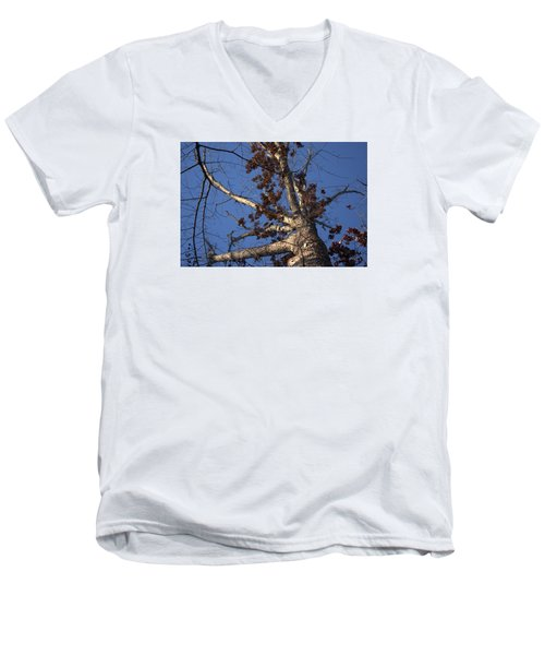 Tree And Branch Men's V-Neck T-Shirt